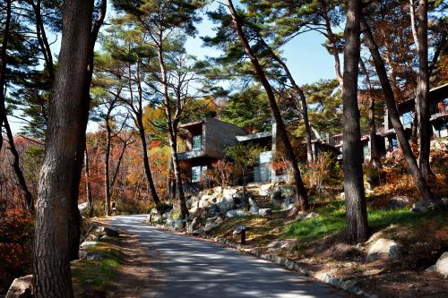 Resom Forest (리솜 포레스트)