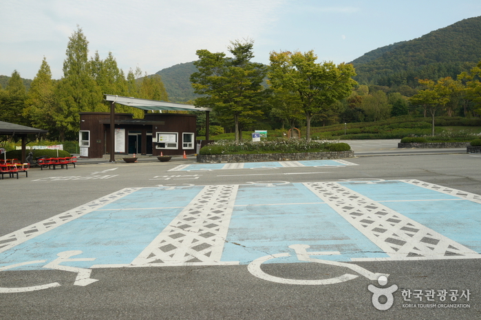 Bosque Recreativo Geumgang (Arboreto Geumgang, Museo Forestal) (금강자연휴양림(금강수목원,산림박물관))