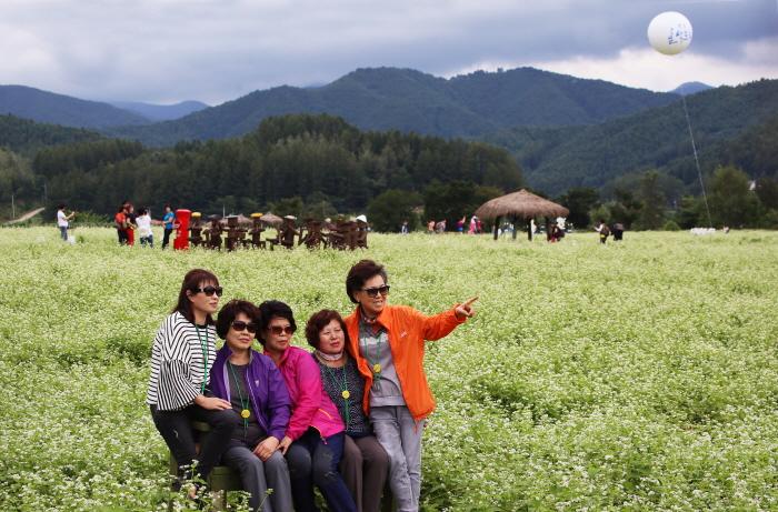 Культурный фестиваль имени писателя Ли Хё Сока в Пхёнчхане (평창효석문화제)31