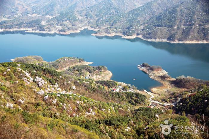 가로로 가운데에는 강이 흐르고 있고, 산에는 산수유와 벚꽃이 피어나고 있다.