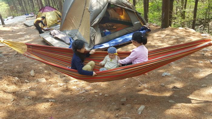 산음자연휴양림에서 캠핑을 즐기는 가족