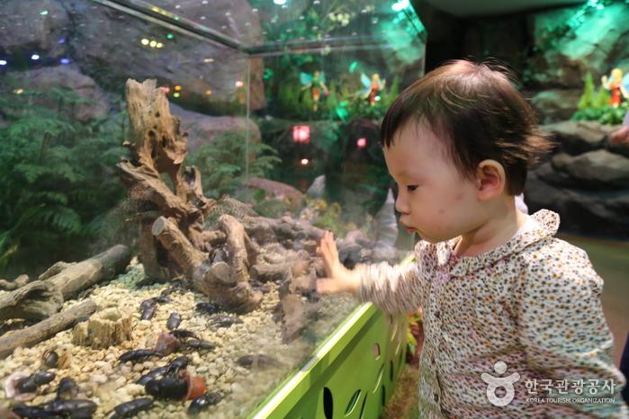 환상의 숲에서 곤충을 바라보는 아이