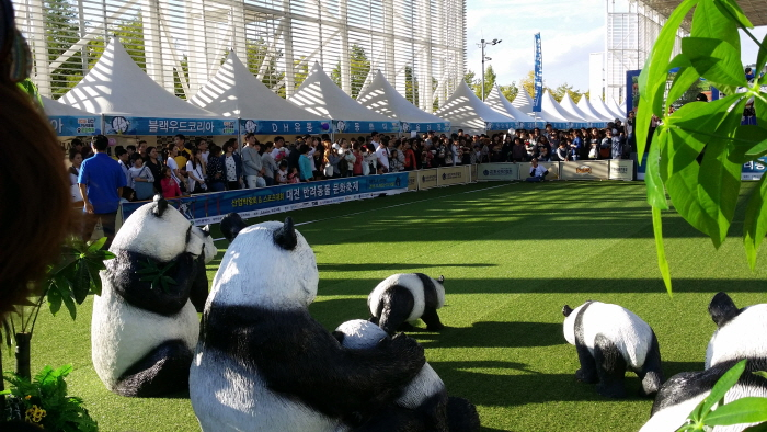 동물보호문화축제 2018