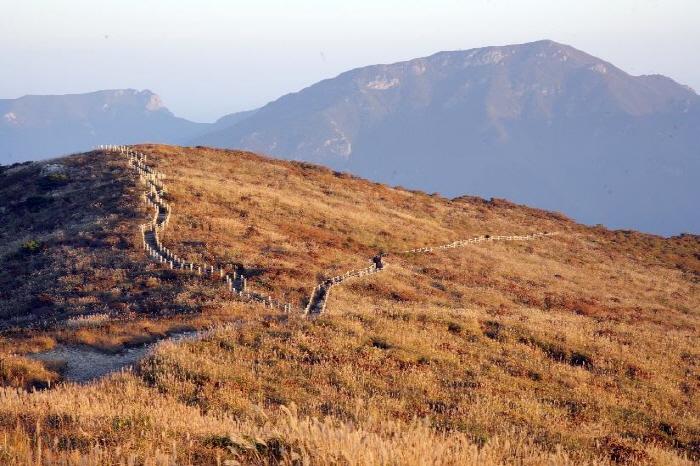 Jaeyaksan Mountain (재약산)