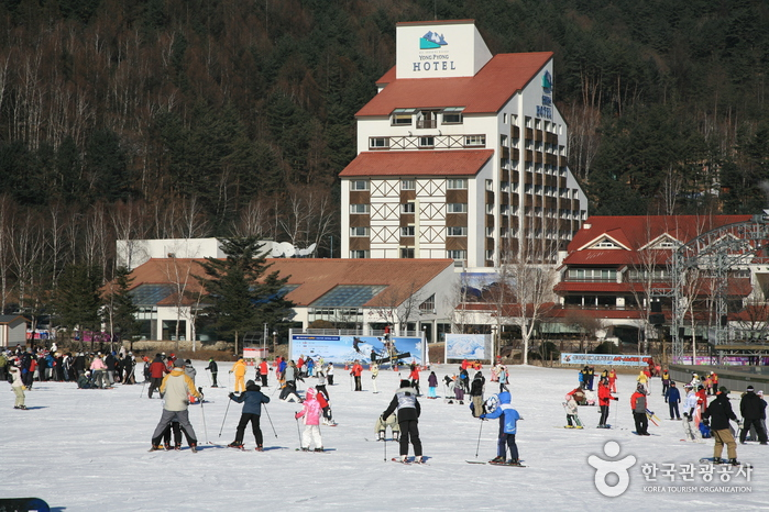 Yongpyong Resort Ski & Snowboard (용평 리조트 스키장)