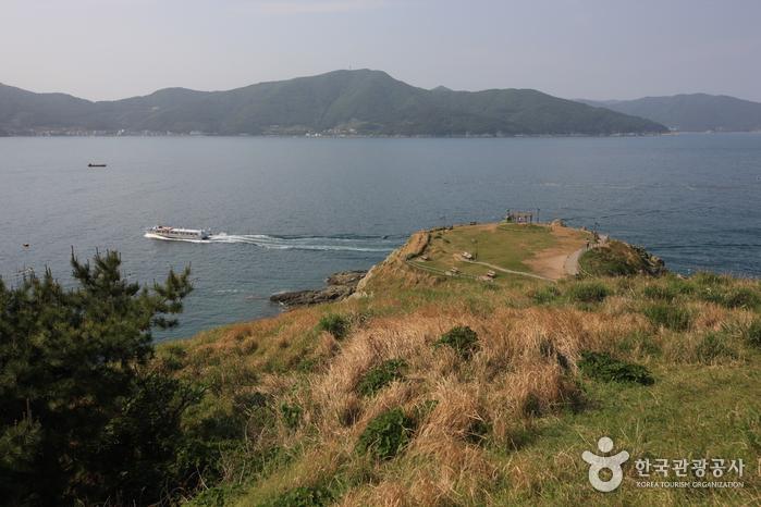 바람의 언덕 사진13