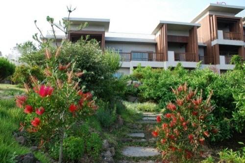 Jeju Eco Suites (제주에코스위츠)