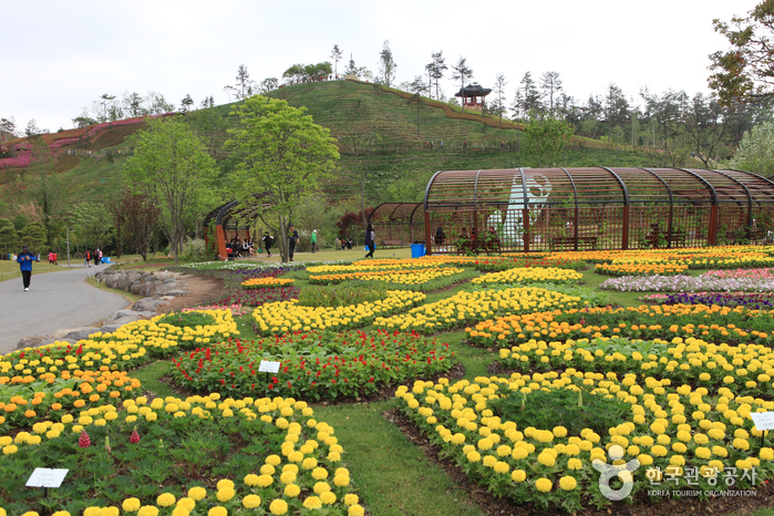Suncheonman Bay National Garden (순천만국가정원)