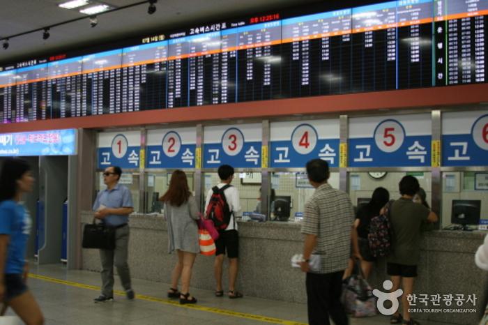 Daejeon Terminal Complex (대전복합터미널)