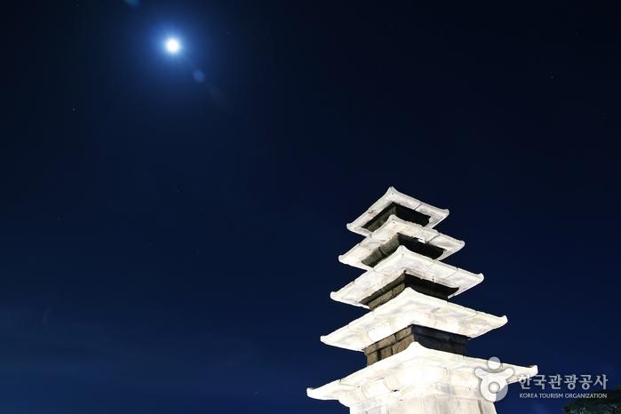 Fünfstöckige Steinpagode der Tempelanlage Jeongnimsaji [UNESCO Welterbe] (부여 정림사지 오층석탑 [유네스코 세계유산])