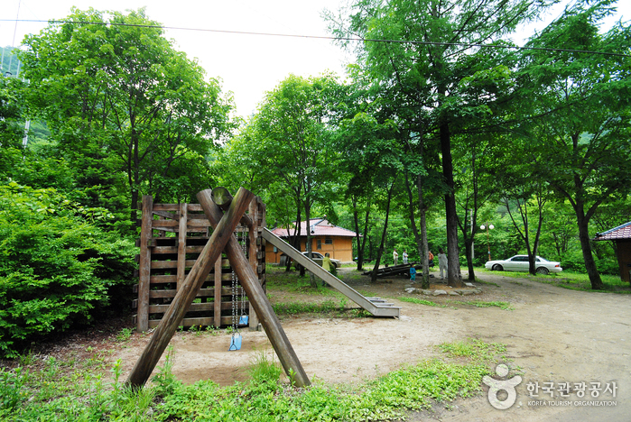Bosque Recreativo Sambong (삼봉자연휴양림)7