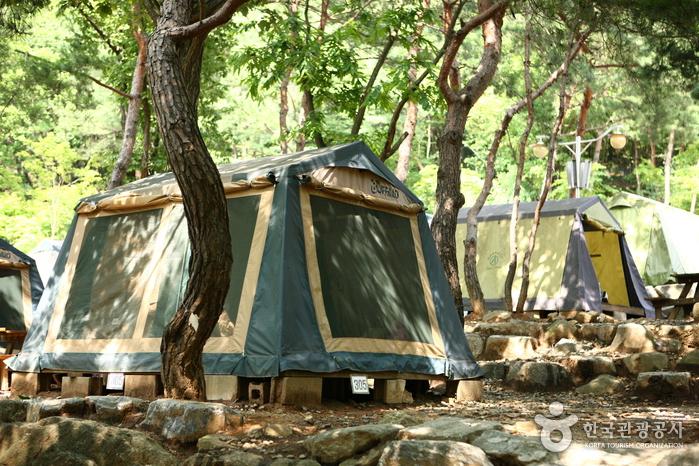 Camping au naturel du Grand Parc de Séoul