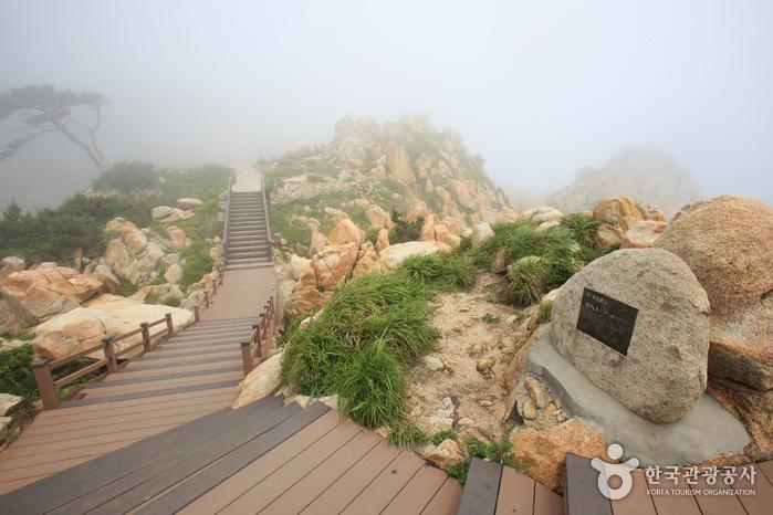 대왕암공원