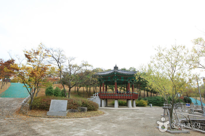 518 Memorial Park (518 )