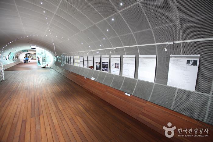 Ttukseom Hangang Park (한강시민공원 뚝섬지구)