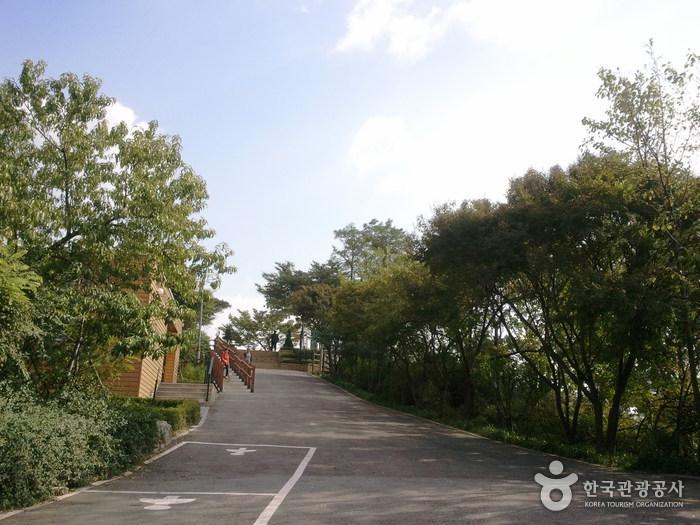 鷹峰山(首爾)(응봉산(서울))
