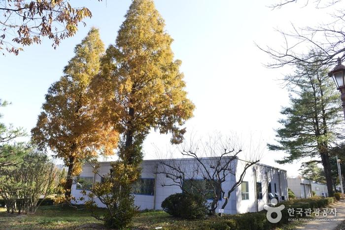Научно-исследовательский институт окружающей среды в провинции Кёнсанбук-до (경상북도 산림환경연구원)3