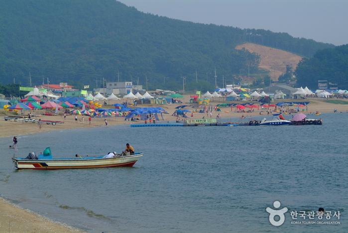 Incheon city tour (인천시티투어)