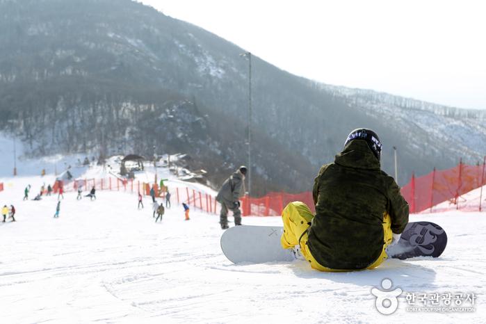 High1 Ski Resort (하이원리조트 스키장)