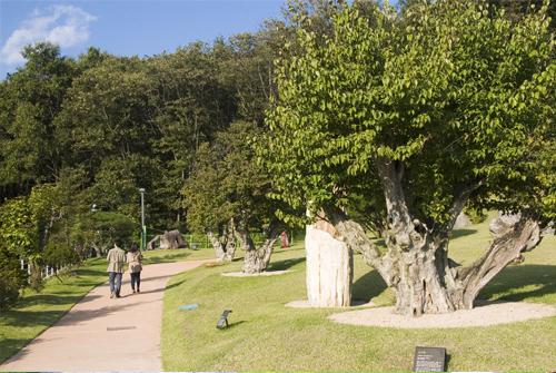 Ботанический сад Soulone (소울원)8