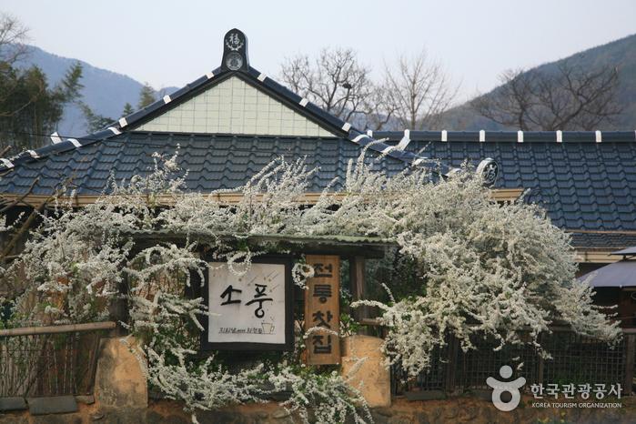평화로운 마을을 감싸는 천년 고찰