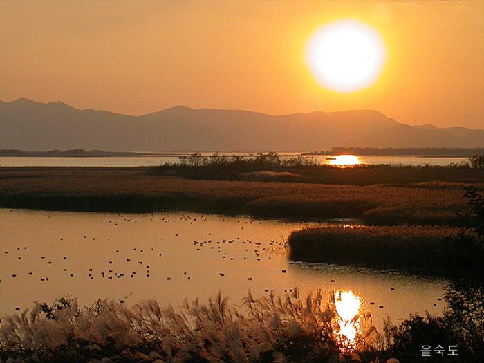 Nakdonggang Bird Sanctuary (Eulsukdo Island) (을숙도 철새공원)