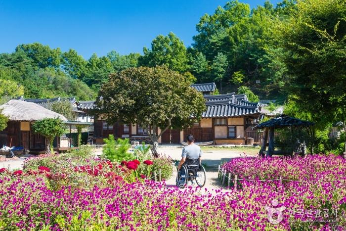 강내음 숲내음 넘실대는 가을, 경북 영주&예천  사진