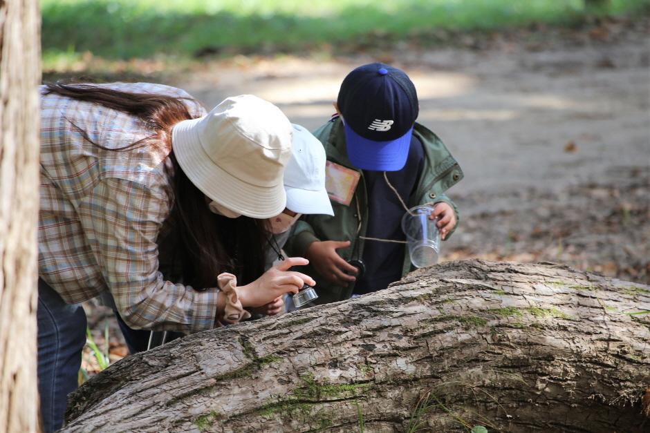 남이섬 가족숲체험: 뚜벅 숲탐험대 2020