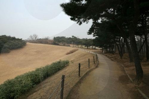 ソウル夢村土城(서울 몽촌토성)
