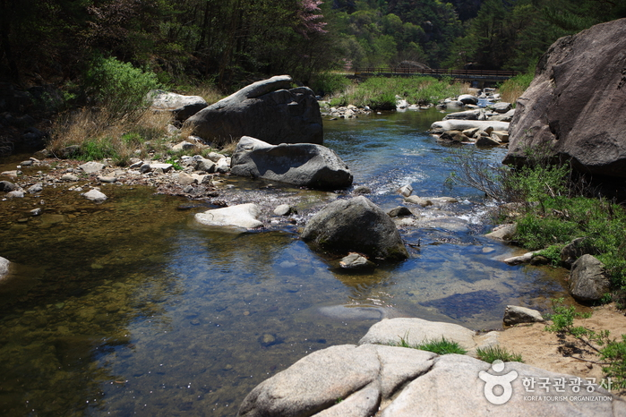 Tal Seonyudonggyegok (선유구곡(선유동계곡))