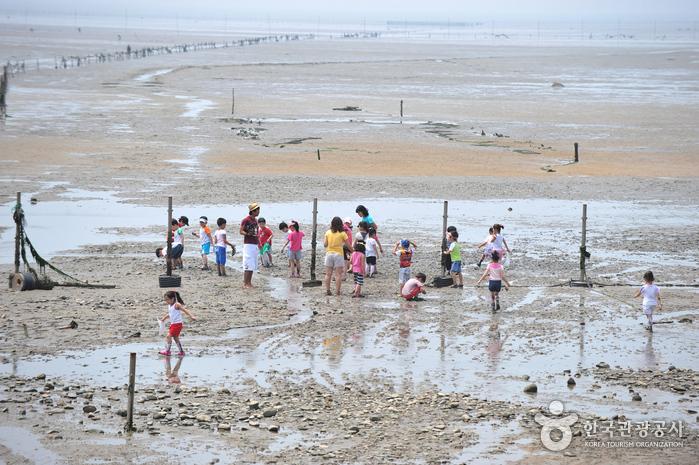Морское побережье Масиан на острове Ёнчжондо (영종도 마시안해변)9