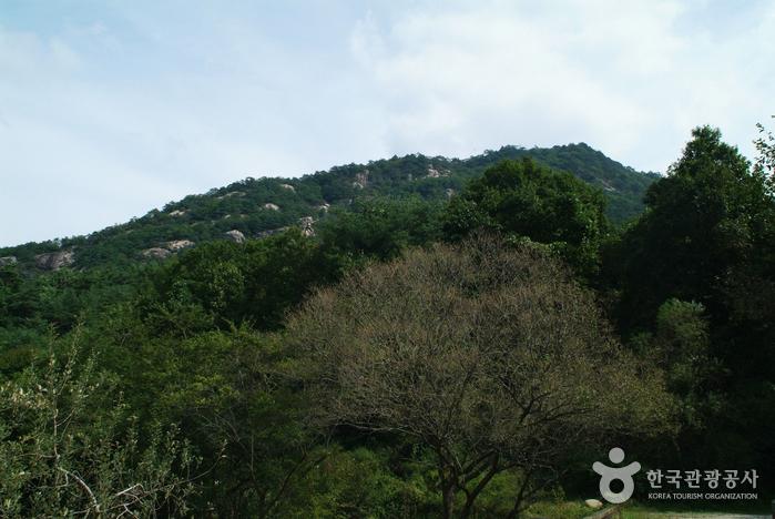 포암산(충주)
