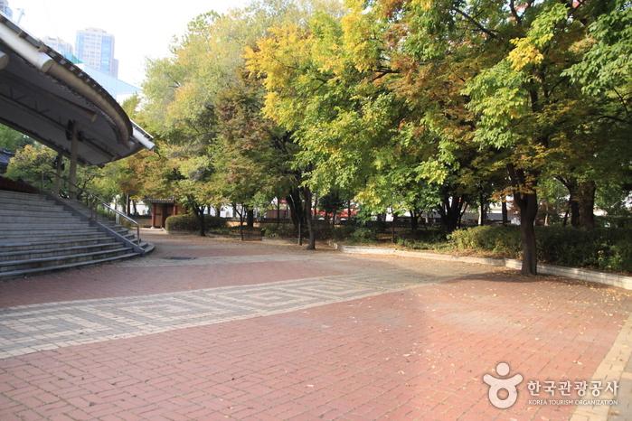 Нори мадан в Сеуле (서울놀이마당)4