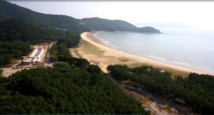 Île Deokjeokdo (덕적도 갈대 군락지)