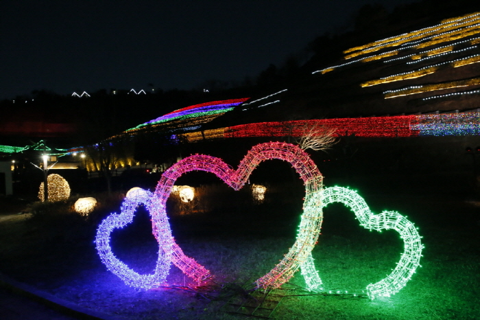 Boseong Tea Plantation Light Festival (보성차밭 빛축제)