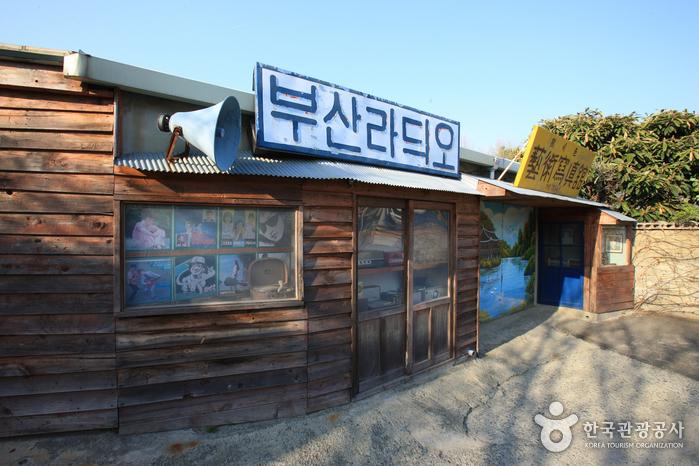 김씨 박물관