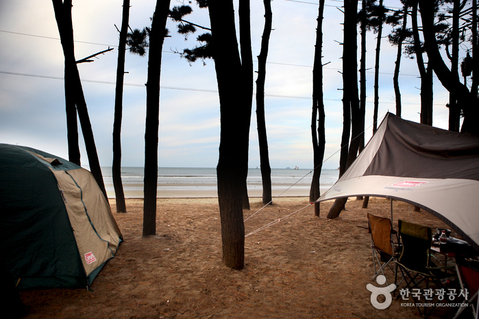 캠핑을 즐기며 여유롭게 돌아보는 태안