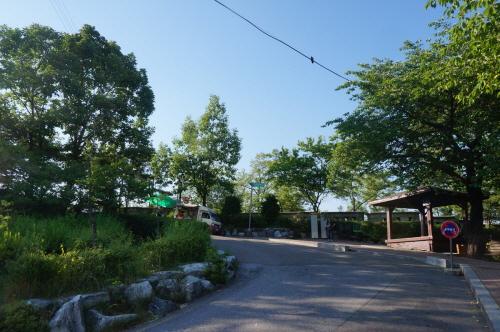 Waryong Park (와룡공원)
