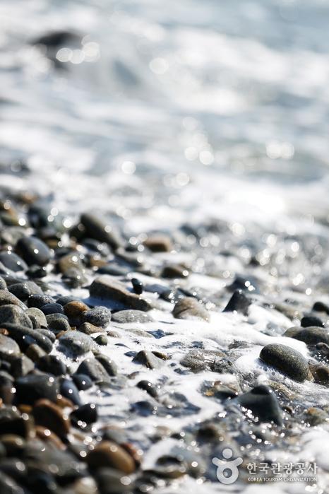 朱田鵝卵石海邊(주전몽돌해변)8
