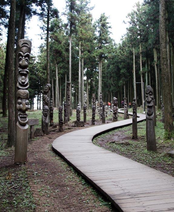 초록빛 물오른 청량한 숲길 산책