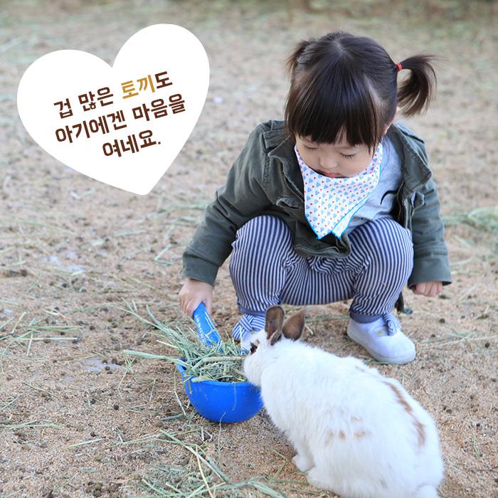 겁 많은 토끼도 아기에겐 마음을 여네요.