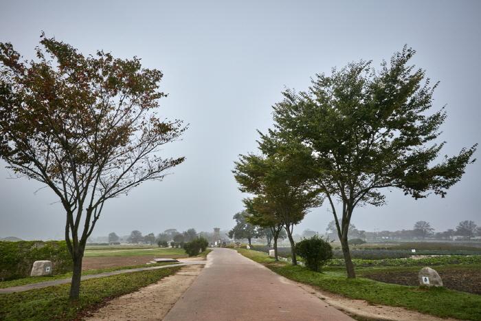 慶州東部史跡地帯(경주 동부 사적지대)