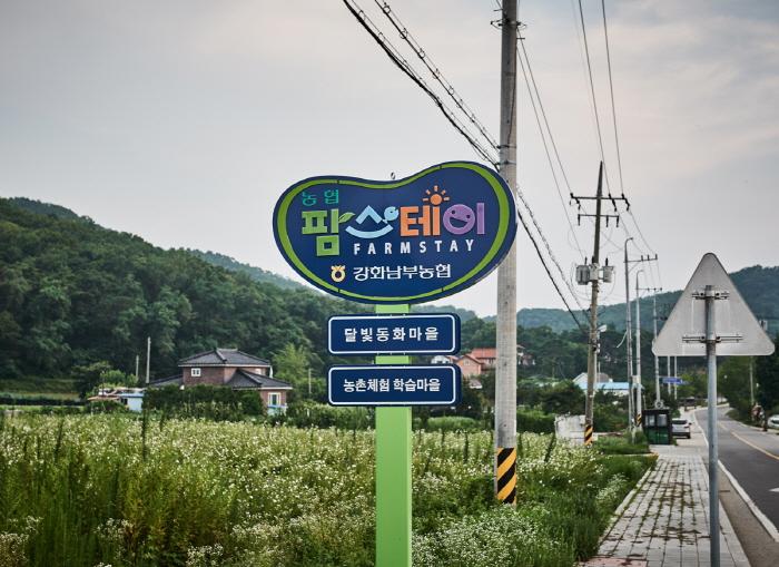 강화 달빛동화마을