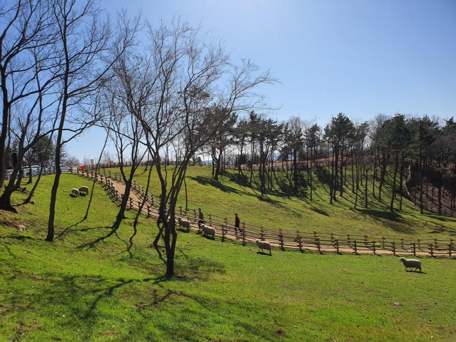 숲소리공원