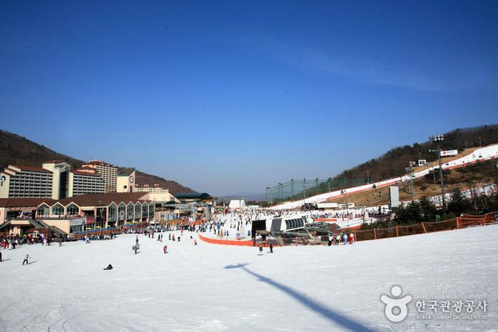 Station de ski Daemyung Vivaldi (대명비발디파크...