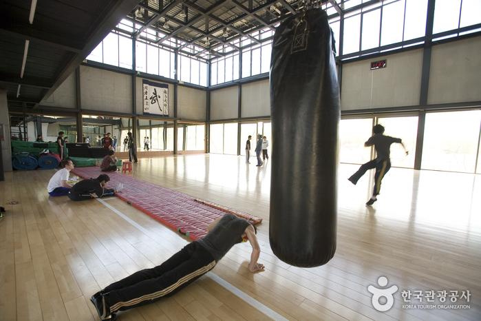 Seoul Action School (Martial Arts Center) ( ())