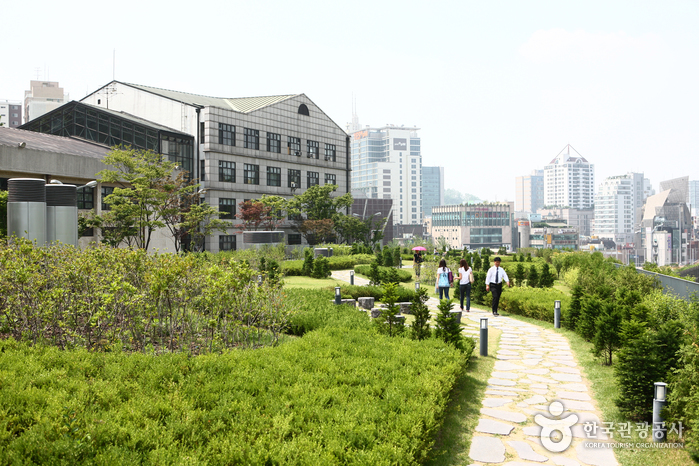 Ewha Womans University ̝�화여자대학교 Official Korea Tourism