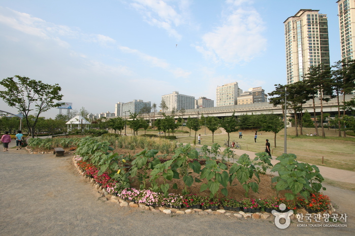Sangdong Lake Park (상동호수공원)