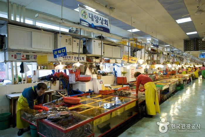 Sección de Conchas Marinas del Mercado Jagalchi (부산 자갈치시장 전복부)