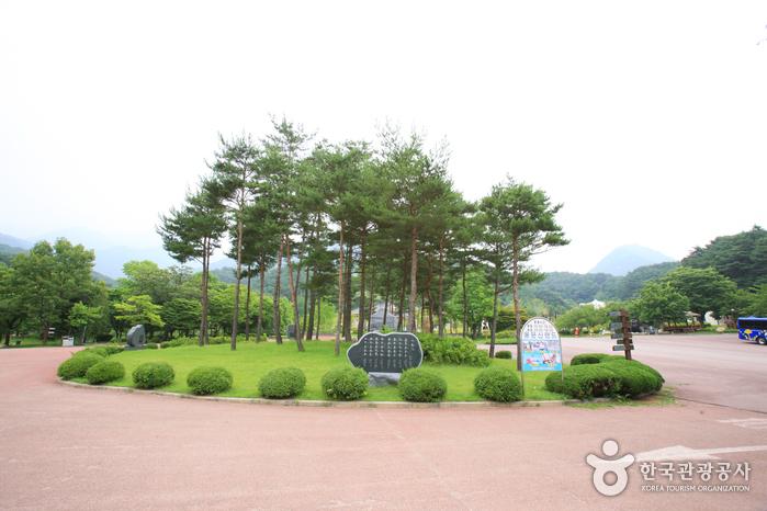 Yongmunsan Resort (용문산 관광지)